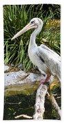 Pelican At Rest Bath Towel