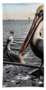 Pelican At The Pier Bath Towel
