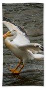 Pelican Landing Bath Towel