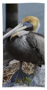 Pelican On Rocks Bath Towel