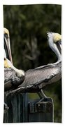 Pelican Threesome Bath Towel