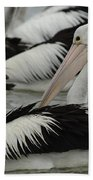 Pelicans Galore Bath Towel