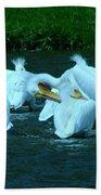 Pelicans Hanging Out Bath Towel