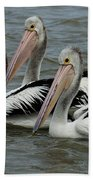 Pelicans In Australia 3 Bath Towel