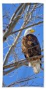Perched Bald Eagle Bath Towel