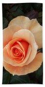 Perfect Peach Rose Bath Towel