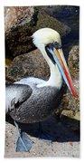 Peruvian Pelican Bath Towel