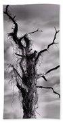 Petrified Tree Hand Towel