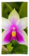 Phalaenopsis Bellina Bath Towel