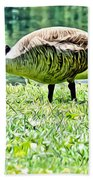 Philly Goose In The Grass Bath Towel