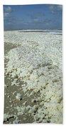 Phytoplankton Bloom On Beach Hand Towel