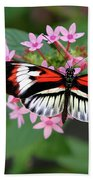 Piano Key Butterfly On Pink Penta Bath Towel