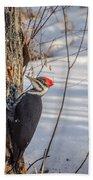 Pileated Woodpecker Winter Bath Towel