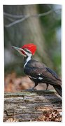 Pileated Woodpecker On Log Bath Towel