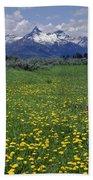 1a9210-pilot Peak And Wildflowers Bath Towel