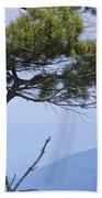 Pine Tree Along The Blue Ridge Parkway Bath Towel