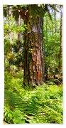Pine Trees And Ferns Bath Towel