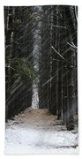 Pines In Snow Hand Towel