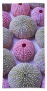 Pink And Green Urchins Bath Towel