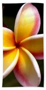 Pink And Yellow Plumeria Hand Towel