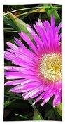 Pink Mesembryanthemum  Bath Towel