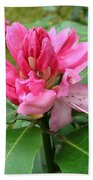 Pink Rhododendron Bud Bath Towel