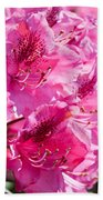 Rhododendron Called Azalea Bright Pink Flowers  Bath Towel