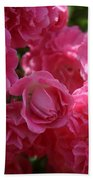 Pink Roses In Sunlight Bath Towel