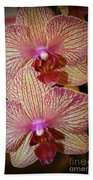 Pink Striped Orchids Bath Towel