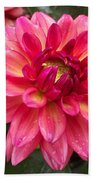 Pink Zinnia Flower Bath Towel
