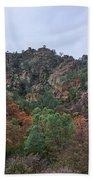 Pinnacles National Park Bath Towel
