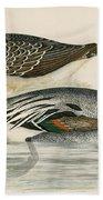 Pintail Duck Bath Towel