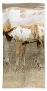Pinto Mare And Filly Bath Towel