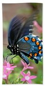 Pipevine Swallowtail Bath Towel