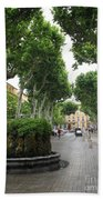 Plane Alley - Aix En Provence Bath Towel
