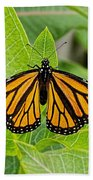 Plant Milkweed And Save The Monarch Butterfly Bath Towel