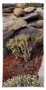 Plants On A Landscape, Anza Borrego Bath Towel