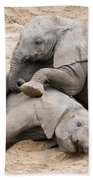 Playful Elephant Calves Bath Towel