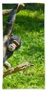 Playing Chimp Bath Towel
