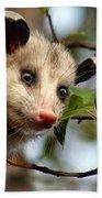 Playing Possum Bath Towel