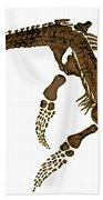 Pleisiosaurus, Mesozic Marine Reptile Bath Towel