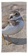 Plover Lover.. Bath Towel