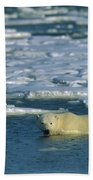 Polar Bear Wading Along Ice Floe Bath Towel