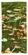 Pond 2 Bath Towel