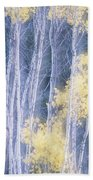Poplar Trees In Autumn, Grey Creek Bath Towel