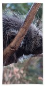 Porcupine Bath Towel