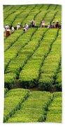 Porto Formoso Tea Gardens Bath Towel