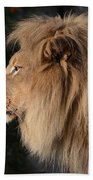 Portrait Of The King Of The Jungle  Bath Towel