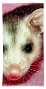 Poser Possum Bath Towel