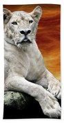 Posing Lioness Bath Towel